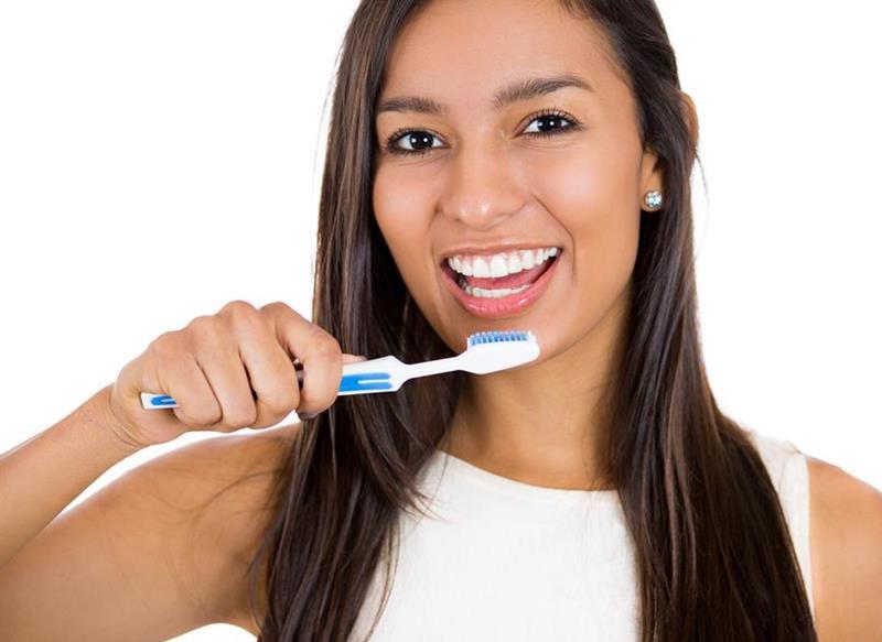 Preventative Dentistry  Safety Harbor, FL